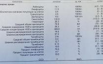 Neu в анализе крови: что это такое? норма и расшифровка показателя нейтрофилов в крови