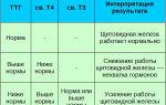 Анализ на ттг: что это, показания, норма и расшифровка
